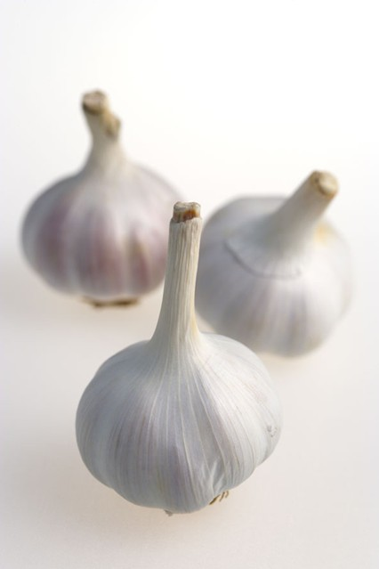 garlic_gl_10nov10_rex-b_426x639