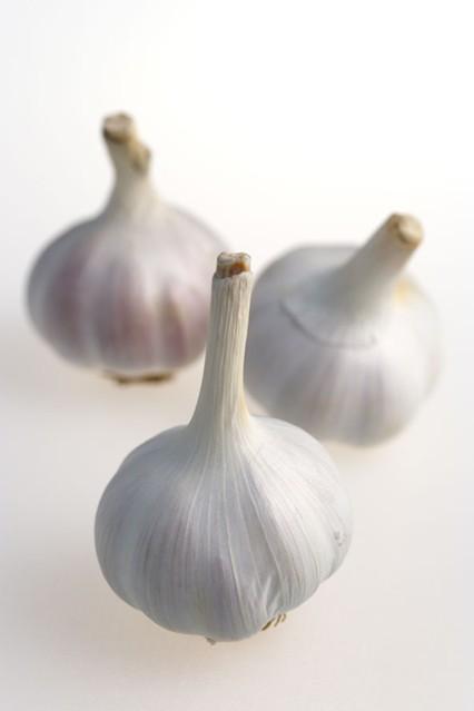 garlic_gl_10nov10_rex-b_426x639