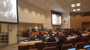 Picture of participants at the UN's 70th General Assembly Event centred on Boko Haram | Twitter/Bukky Shonibare
