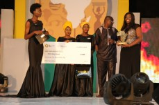 Ford Foundation, Ukinebo Dare Winner | RED