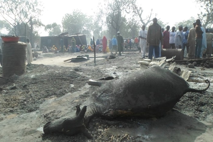 People gather around a dead animal and burnt out houses following an attack by Boko Haram in Dalori village 5 kilometers (3 miles) from Maiduguri, Nigeria , Sunday Jan. 31, 2016. | AP/Jossy Ola