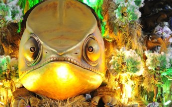 rio-carnival--fish_2841251k