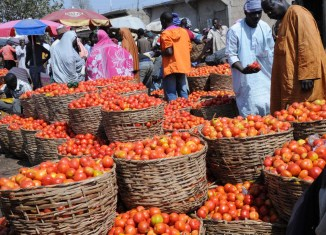 Africa Tomato Food inflation