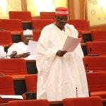 Senator Ali Ndume on the floor of the Nigerian Senate