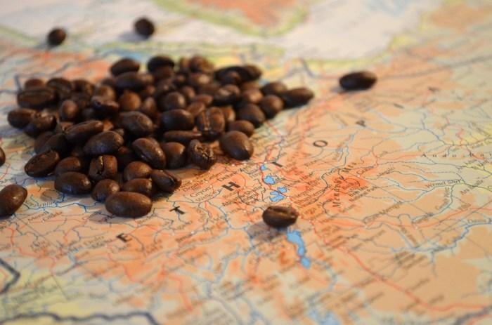 Coffeeberry fruits coffee belt bean belt