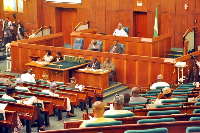 Reps, Budget, National Assembly