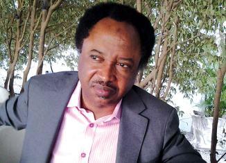 Nasir El-Rufai, Shehu Sani, sues, N2 billion, APC