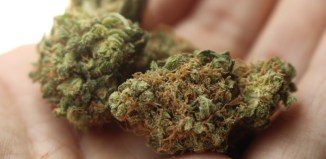 Marijuana, Raymond Zondo, South African