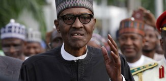 government President Muhammadu Buhari, Paul Arkwright,