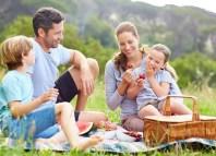 Family Picnic holidays