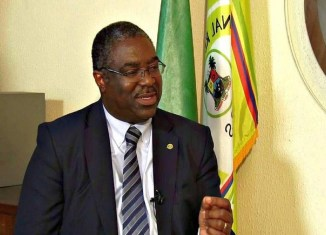 Babatunde Fowler, the Federal Inland Revenue Service Chief