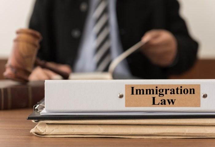 immigration lawyer you need