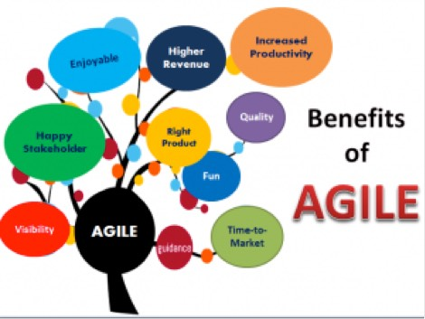 agile knowledge