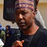 Professor Babagana Zulum, the governor of Borno State
