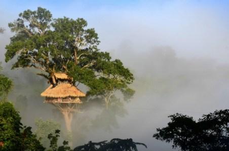Bokeo Nature Reserve, Laos