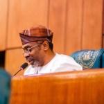 Fake News, Femi Gbajabiamila, Speaker of the House of Representatives
