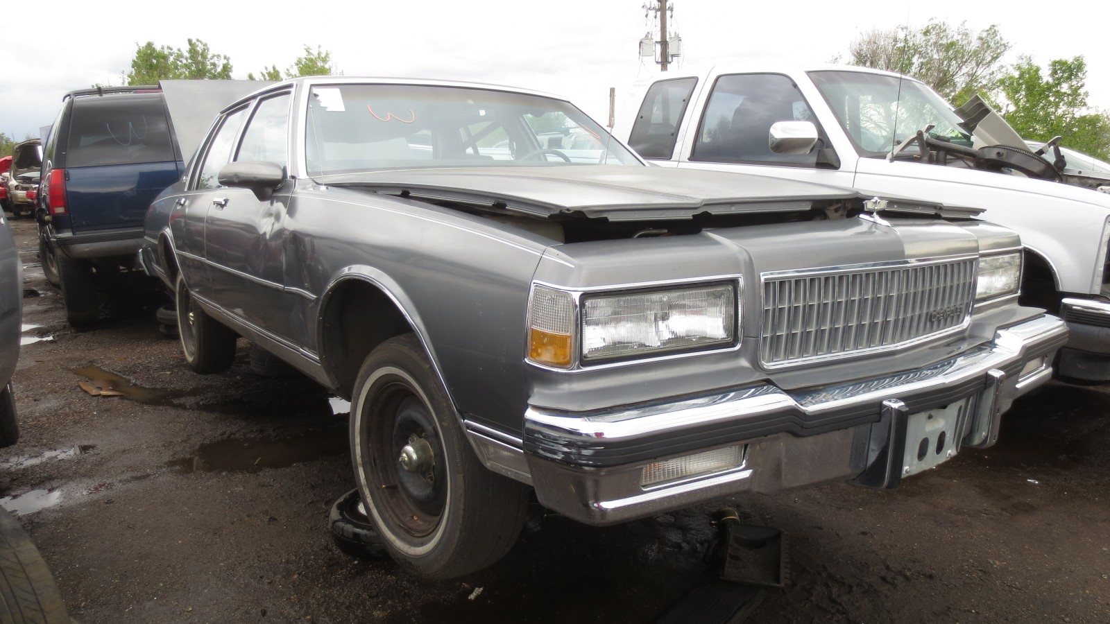 00 1988 chevrolet caprice down on the junkyard picture courtesy of murilee martin