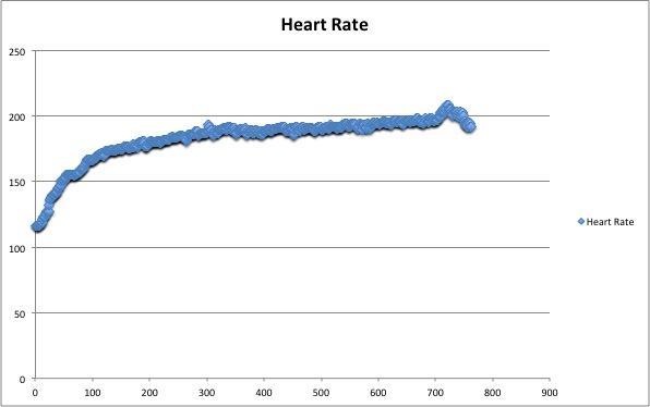 That Time My Heart Rate Broke 200 BPM   Written By Tyler Kee
