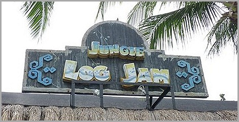 Jungle Log Jam