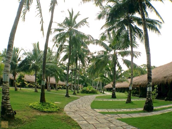 South Palms Resort Panglao - Bohol - Visit Bohol 2015