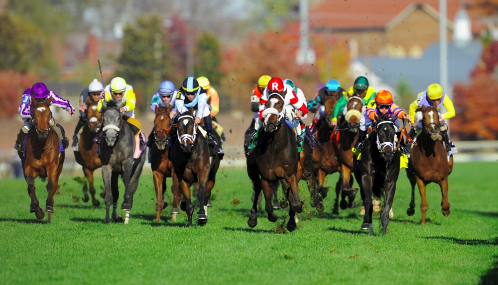 Keeler Johnson's Graded Stakes Preview for August 15, 2015