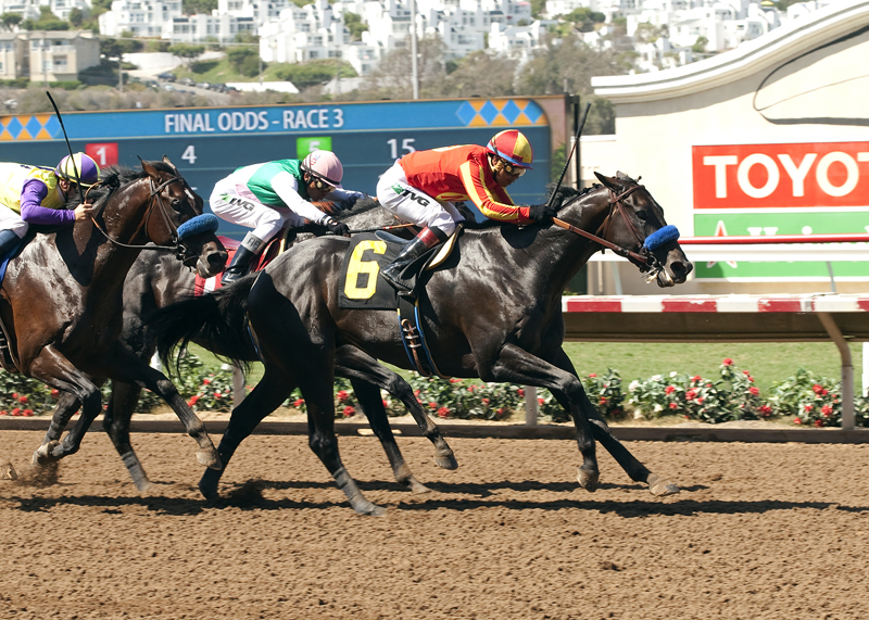 Gimme Da Lute and jockey Martin Garcia, right, outleg Fame and Power (Rafael Bejarano), inside, and Desert Dynamo (Flavien Prat), left, to win the 0,000 El Cajon Stakes, Saturday, August 29, 2015 at Del Mar Thoroughbred Club, Del Mar CA. © BENOIT PHOTO