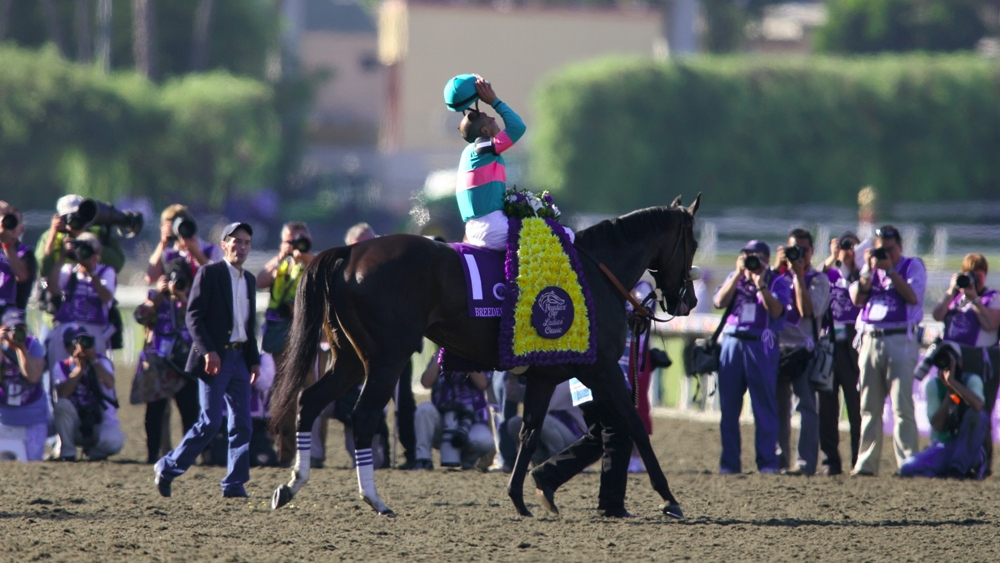 Flashback Friday: Zenyatta Wins the El Encino Stakes