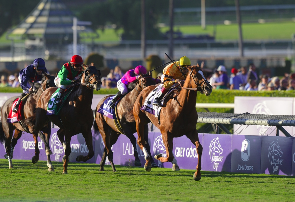 Wise Dan Week, Part 2: The 2012 Breeders' Cup Mile