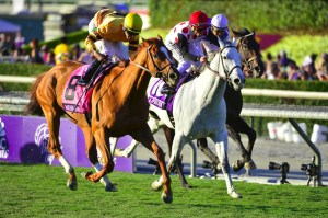 Wise Dan surging to the lead in the 2013 Breeders' Cup Mile - Breeders' Cup Photo (c)