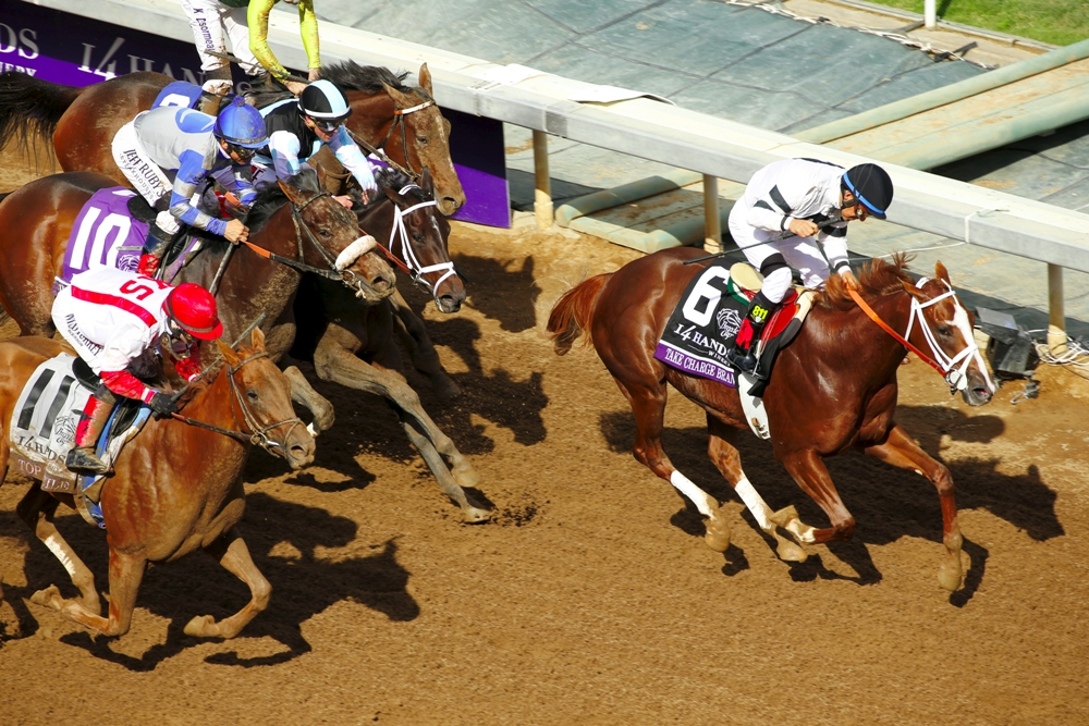Take Charge Brandi: A Very Game Filly