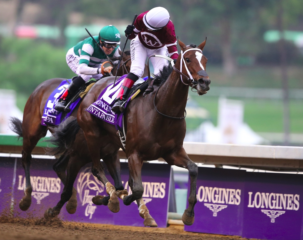 2015 Breeders' Cup Distaff Post Positions