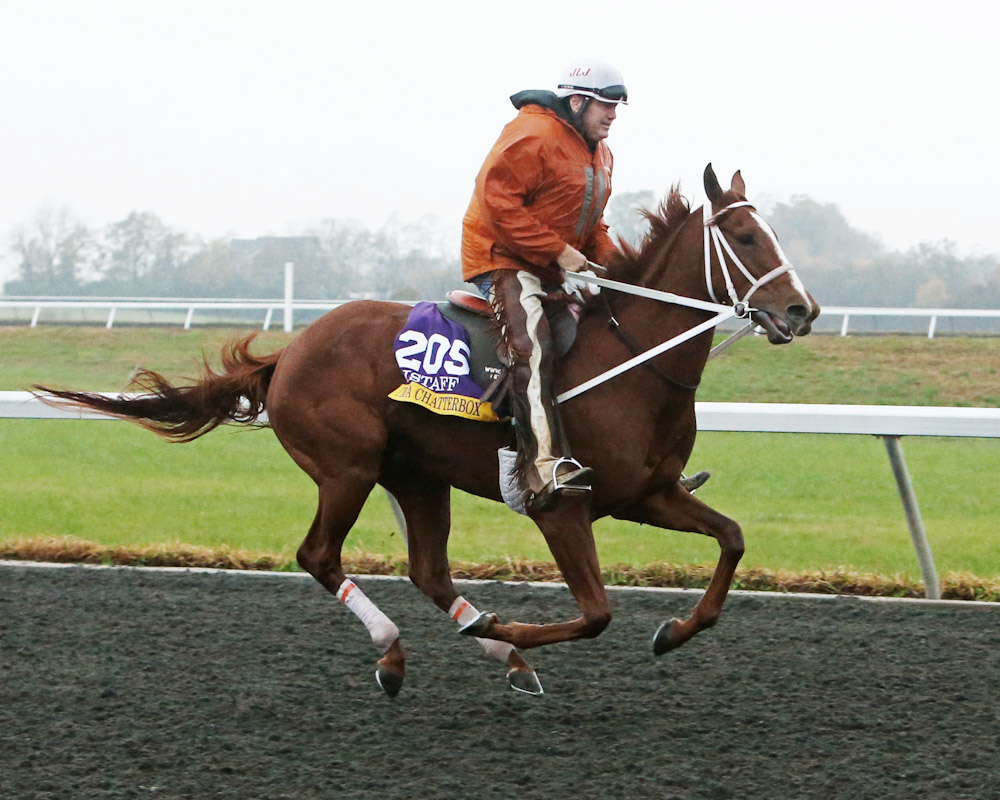 I'm a Chatterbox - Morning Training - Keeneland Race Course - 10