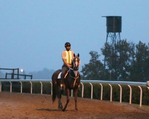 Lovely Maria | Morning Training | Keeneland Race Course | 09-29-