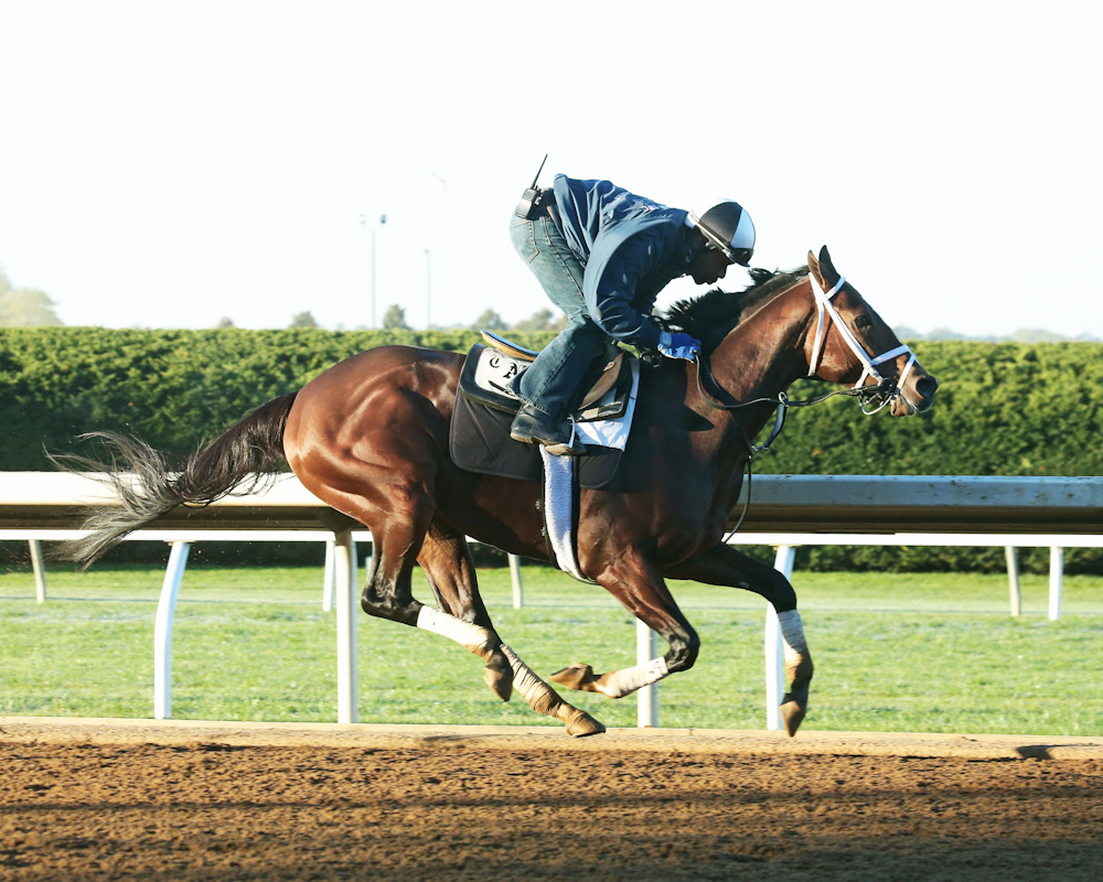 Mshawish breezing at Keeneland - Keeneland Photo