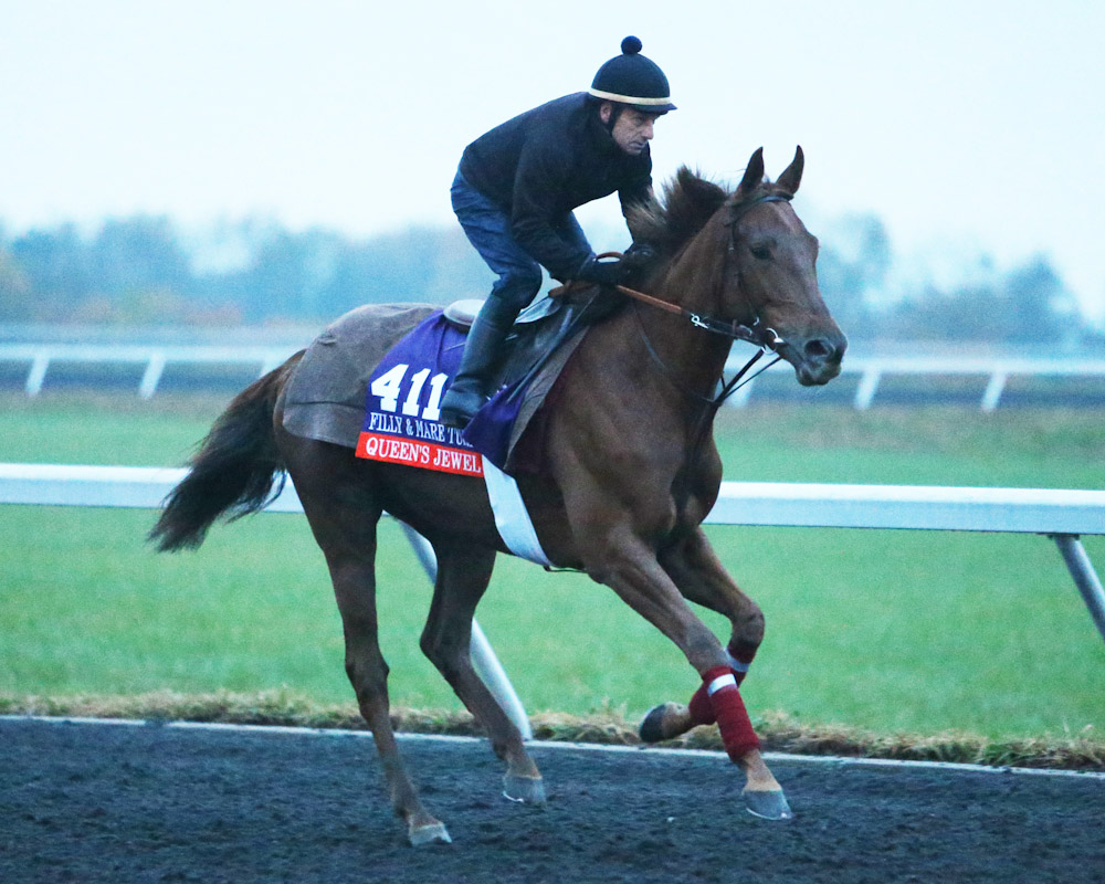 Queen's Jewel - Morning Training - Keeneland Race Course - 10271