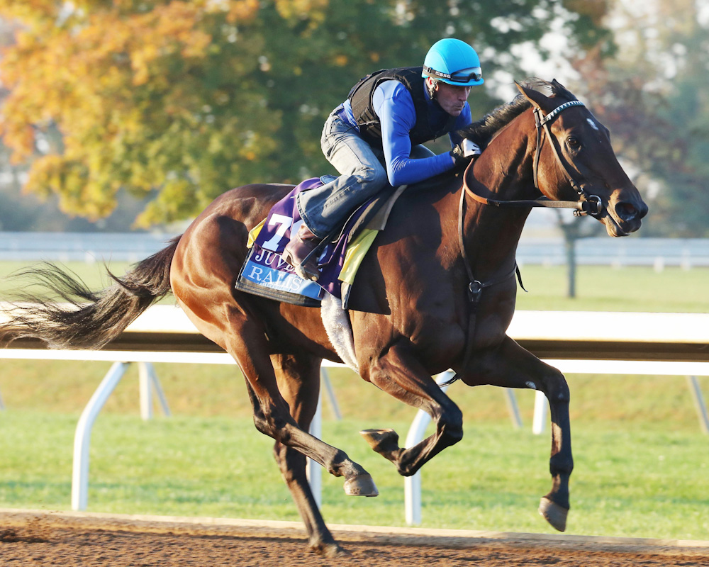 Ralis, Cupid Join Expected Field for Rebel Stakes