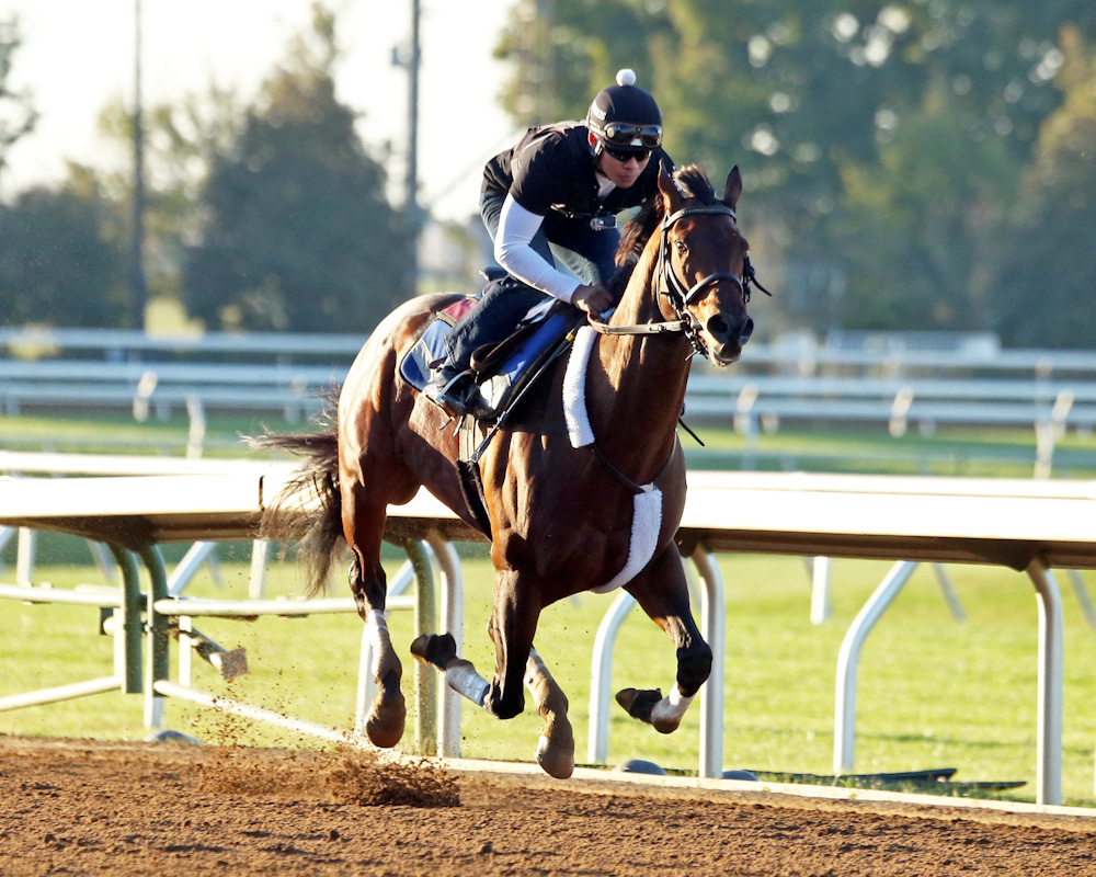 RunHappy - Morning Work - Keeneland - 102151-002