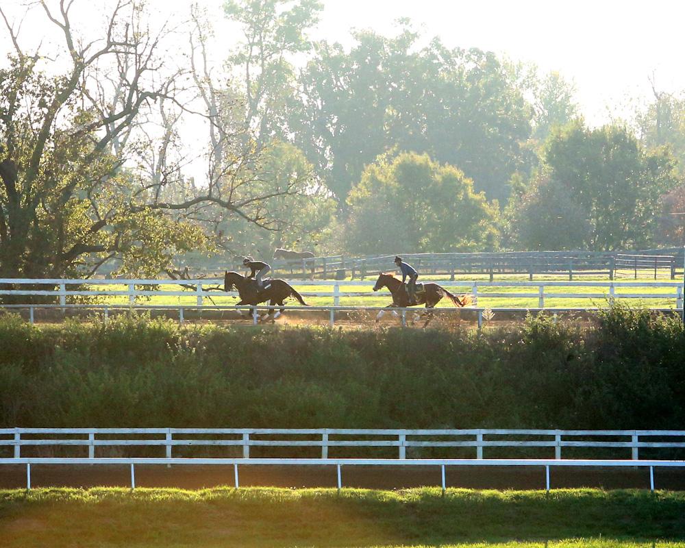 Slideshow: Runhappy Training at Keeneland