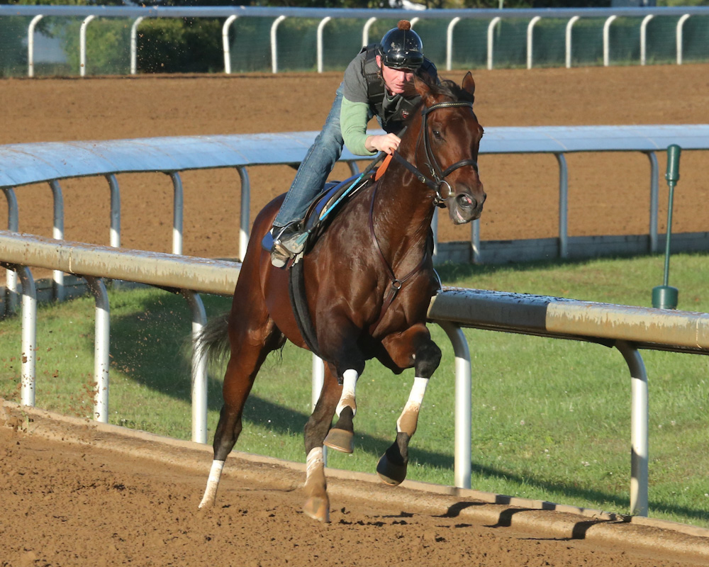 Runhappy breezes five furlongs at Keeneland on October 14th, 2015 - Keeneland Photo