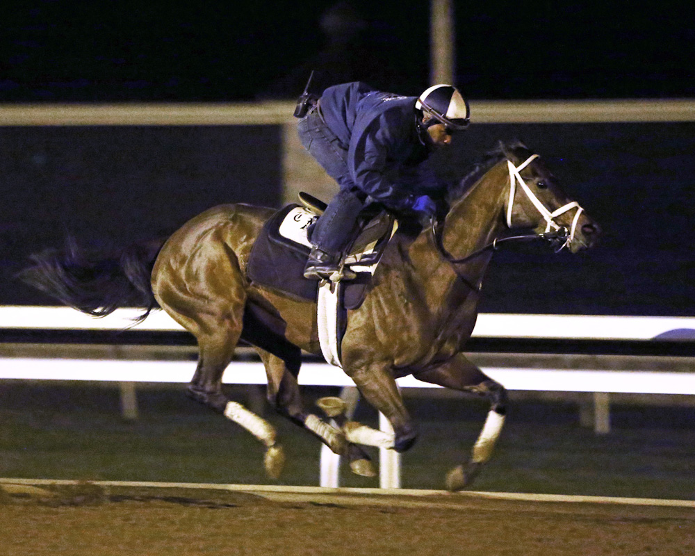 Sweet Whiskey breezing at Keeneland - Keeneland Photo