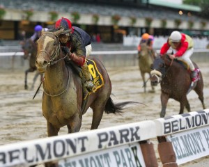 Tonalist, caked with mud, cruises to victory in the Jockey Club Gold Cup (gr. I) at Belmont Park - Photo by NYRA/Coglianese Photos/Joe Labozzetta