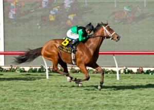The Pizza Man rallies to a spectacular win in the 2015 Hollywood Turf Cup (gr. II) at Del Mar - ©Benoit Photo