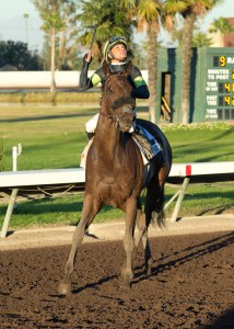Jockey Mike Smith and Street Fancy after winning the Starlet Stakes (gr. I) at Los Alamitos - © BENOIT PHOTO