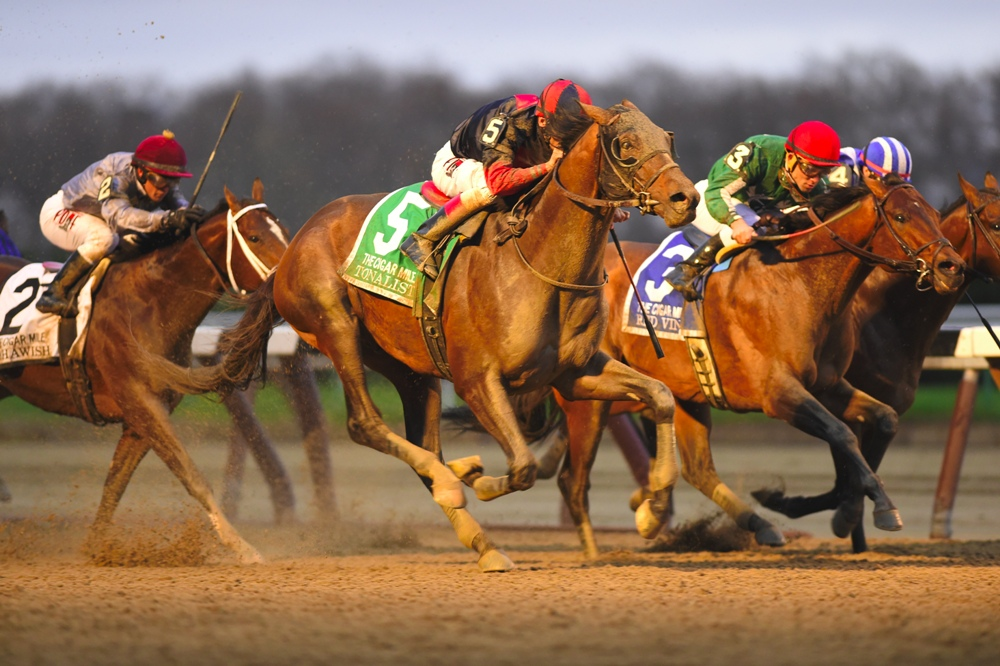 Tonalist rallying to win the 2015 Cigar Mile (gr. I) at Aqueduct - Photo by NYRA/Coglianese Photos