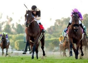 Flamboyant winning the 2016 San Gabriel Stakes (gr. II) at Santa Anita - © Benoit Photo