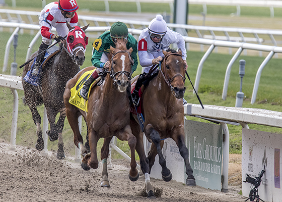 Majestic Harbor, right, white cap, outduels Eagle, left, to win the wins the Mineshaft Handicap (Gr III) at the Fair Grounds Race Course, Saturday, February 20, 2016 in New Orleans, LA.  Corey Lanerie was the winning jockey. Photo by Alexander Barkoff / Hodges Photography