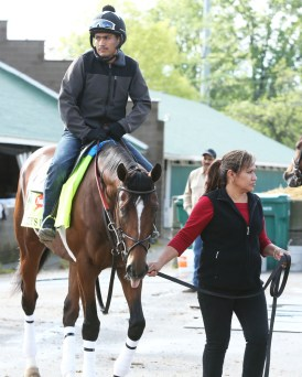 Brody's Cause at Churchill Downs - Coady Photography