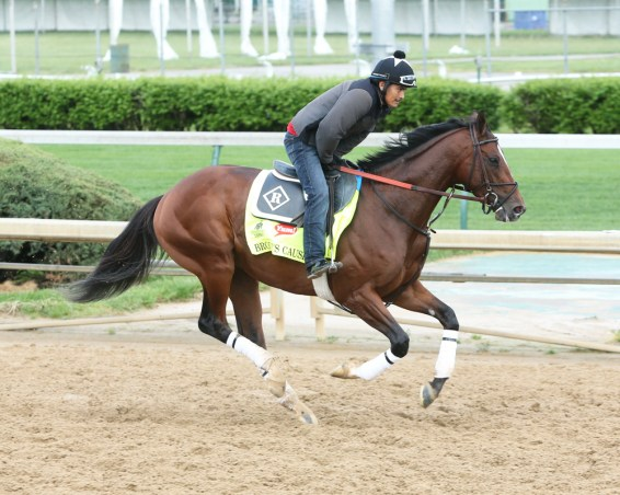 Brody's Cause galloping at Churchill Downs - Coady Photography