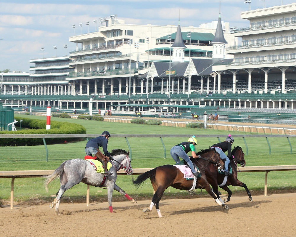 The Morning at Churchill in Photos and Videos, 4-25-16