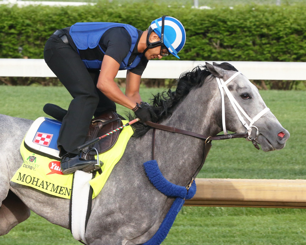 Mohaymen Sharp in First Churchill Breeze